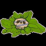 Cloaca Monästeria